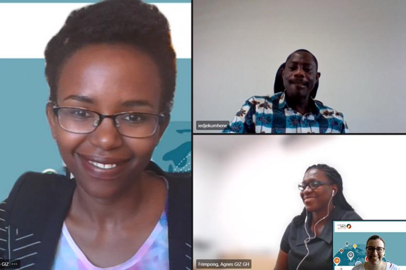 PEP-Webinar: Solar-PV für die Agroindustrie in Ghana