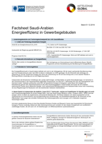 Technologie-Factsheet Saudi-Arabien